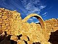 PikiWiki Israel 65002 sivta national park .jpg