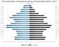 Piramida wieku Gmina Grodzisk Mazowiecki.png