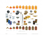 Plate XII, Marine Enlisted Uniform Accessories - U.S. Marine Corps Uniforms 1983 (1984), by Donna J. Neary