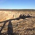 Plateau de Vitrolles traces incendie 2.jpg
