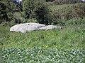 Plouescat (29) Dolmen de Créac'h-ar-Vren 03.JPG