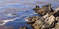 Point Lobos September 2012 012.jpg