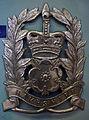 Police helmet badge Hampshire Police.jpg
