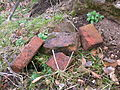 Polnoon Castle - bricks or tiles.JPG