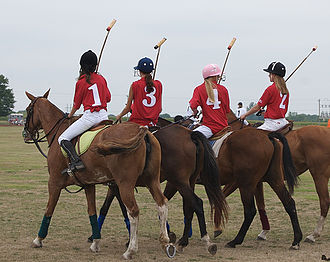Girls and their horses preparing for a polo game PoloGirlsHorses.jpg