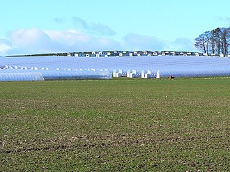 Fruit picking - Fruit-growing polytunnels with caravans for the mainly Eastern European fruit workers conveniently parked behind, Perth and Kinross, Scotland, March 2009