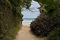 Praia da Baleia - 09-2012 - panoramio.jpg