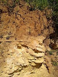 Prehistoric ground un Pontlevoy.jpg