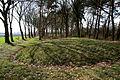 Prehistorische grafheuvels bij Toterfout - Halve Mijl 15.JPG