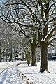 Prospect Park - geograph.org.uk - 1659540.jpg