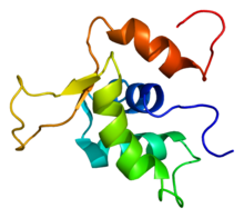 Protein FOXK1 PDB 2a3s.png