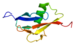 Protein RBBP6 PDB 2c7h.png
