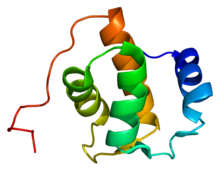 Protein REPS1 PDB 1fi6.png