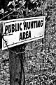 Public hunting area.JPG