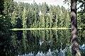 Punkaharju-18-Wald-Spiegelung-1975-gje.jpg