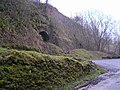 Quarry arches, Cunning Dale - geograph.org.uk - 102817.jpg