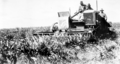 Queensland State Archives 4329 Autoheader harvesting crop of Wheatland Milo sorghum Anchorfield Brookstead c 1938.png