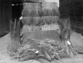 Queensland State Archives 4357 Two well packed bales of broom millet and some others State Produce Agency Brisbane May 1927.png