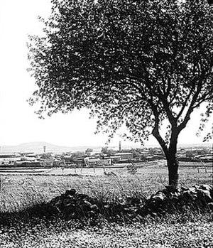 Quneitra - Skyline of Quneitra, 1929