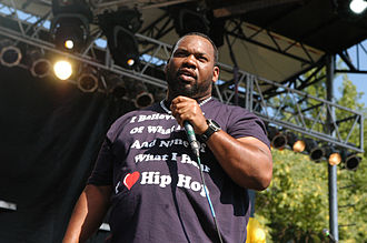 Raekwon - Raekwon at the 2010 Pitchfork Music Festival