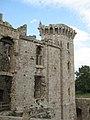 Raglan Castle, Monmouthshire 18.jpg
