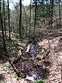 Raymondskill Falls - Pennsylvania (5677486843).jpg