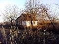 Revbyntsi, Cherkas'ka oblast, Ukraine, 19943 - panoramio (33).jpg