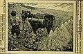 Revue de viticulture - organe de l'agriculture des régions viticoles (1898) (14758821106).jpg
