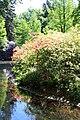 Rhododendronpark Bremen 20090513 073.JPG