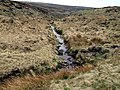 Rimmon Pit Clough - geograph.org.uk - 406245.jpg