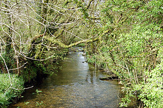 River Camel - The young River Camel at Slaughterbridge upstream of Camelford