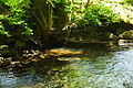 River Fowey above Golitha Falls (3987).jpg