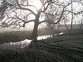 River Redlake - geograph.org.uk - 640742.jpg