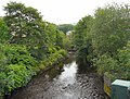 River Tame - geograph.org.uk - 1365590.jpg