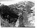 River Torrens(GN05706).jpg