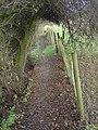 Robin Hood Way near Trowell - geograph.org.uk - 622416.jpg