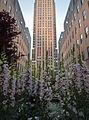 Rockefeller Plaza (7231531976).jpg
