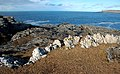 Rocks At Campa - geograph.org.uk - 1163365.jpg