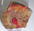 Rodocrosite, da park co. alma, sweet home mine, colorado, usa.JPG