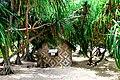 Round Efate trip, 26 Nov. 2006 - Paonangisi (307118855).jpg