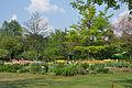 Rueil-Malmaison Parc des Impressionnistes avril 020.JPG