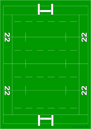 Shannon RFC - Image: Rugbypitch