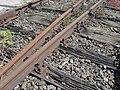 Süddeutsches Eisenbahnmuseum Heilbronn - Schnellzugloktreffen 097 - Flickr - KlausNahr.jpg