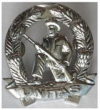 SADF Commando Beret Badge.jpg