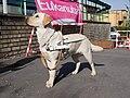 SVVP Klikatá, vodicí pes.jpg