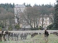 Saintalban21.jpg