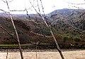 Salang, Afghanistan - panoramio.jpg