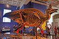 San Diego Natural History Museum (19522471328).jpg