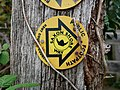 Saxon Shore Way Signage at Bishopstone Glen.jpg