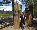 Saylor Moss, Historical Landscape Architect (42299174472).jpg